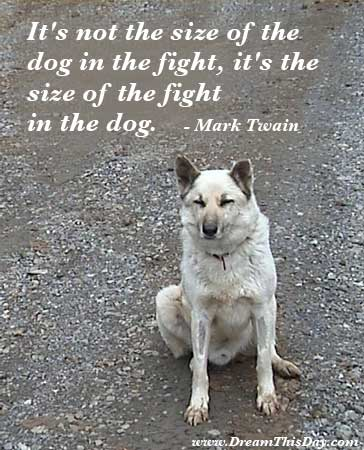 Funny Motivational Quotes. Itu0027s Not The Size Of The Dog In The Fight, Itu0027s  The Size Of The Fight In The Dog.